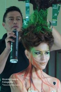 Felipe Alarcón creó un peinado de acuerdo a  la nueva línea natural Essesity, él hizo con el cabello de la modelo un árbol completo, que talento por Dios!
